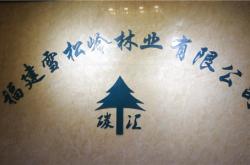 """""""雪松岭林业""""成为福建电视台2020""""品牌福建""""新春贺岁互动合作伙伴"""